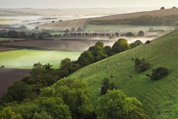 Le Suffolk, ou la campagne Anglaise