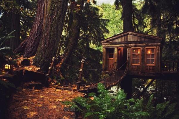 Qui n'a pas rêvé de construire sa propre cabane dans les arbres?