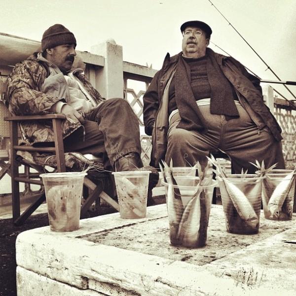 Distribution de poisson dans un port en Turquie