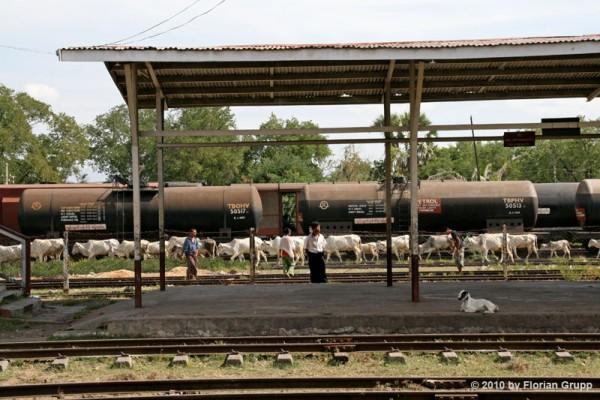 La gare de Thazi en Birmanie (Myanmar)... ambiance très locale!