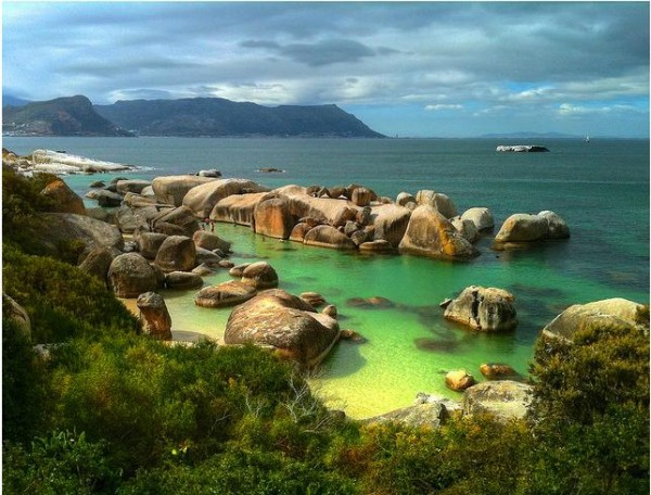 Boulder Beach en Afrique du Sud