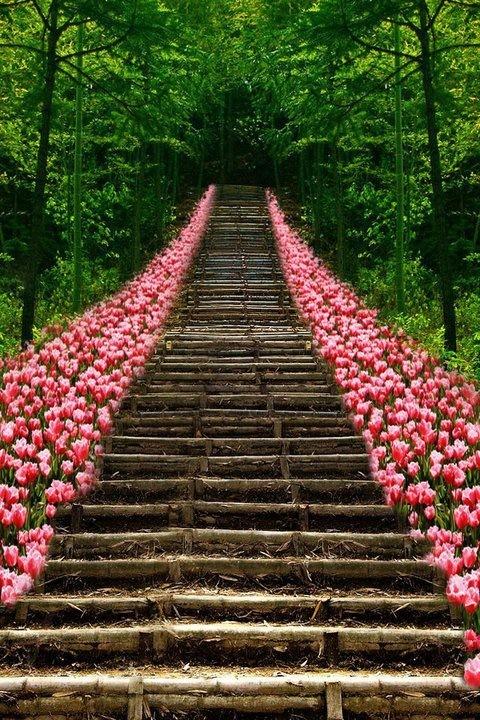 Simple, original, tout en tulipes!