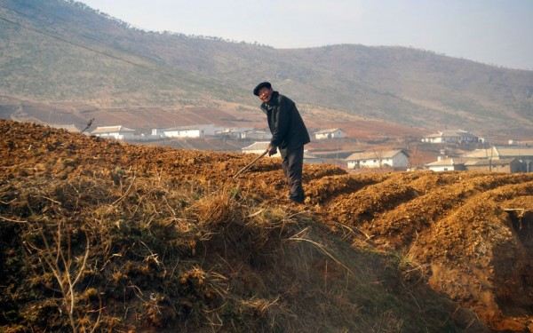 un paysan labourant sa terre à la main