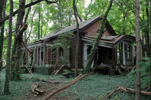 Une île abandonnée au milieu de New York
