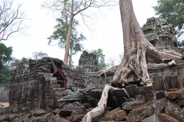 Enfin la vision que j'avais des temples d'Angkor...