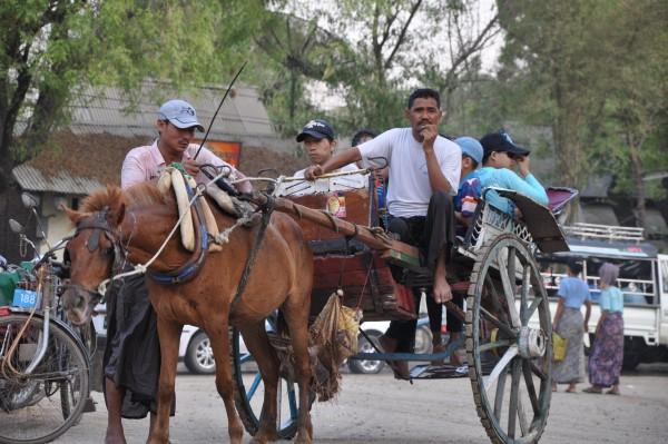 La charrette, moyen de transport classique ici
