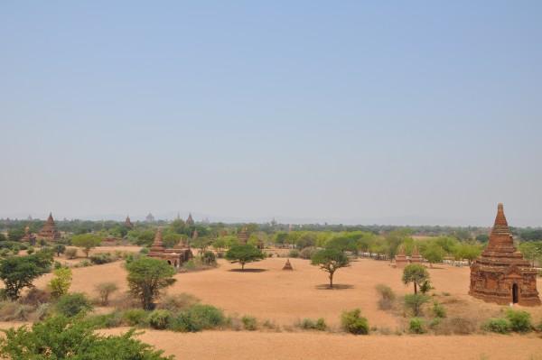 Bagan, ce sont des temples à perte de vue!