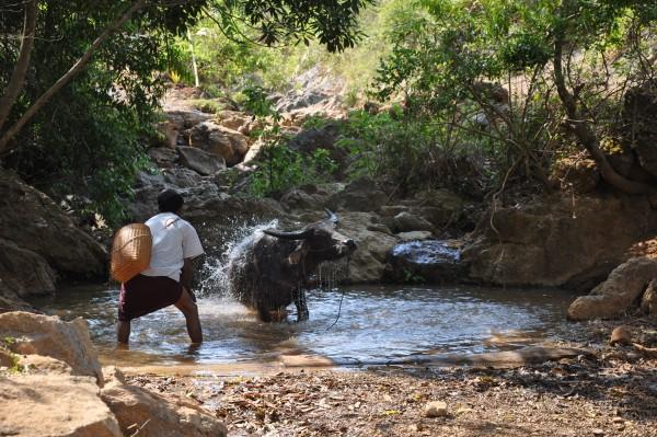 Carnet de voyage: Myanmar – Étape 14: KALAW – TREK – LAC INLE 1/2
