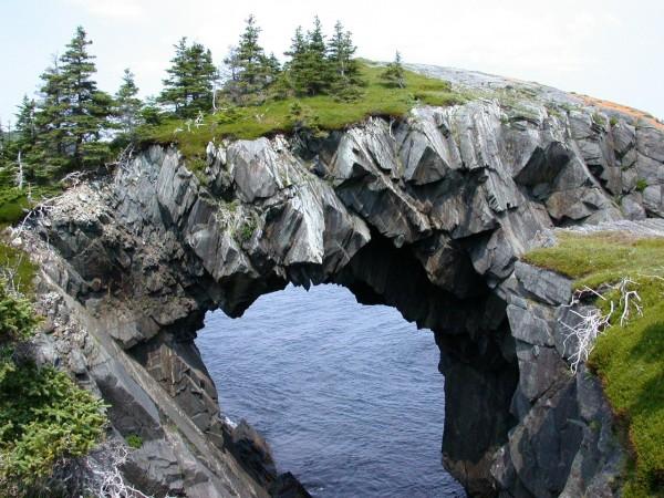 """Le """"berry head arch"""" ou l'arche à tête de baie... au Canada"""