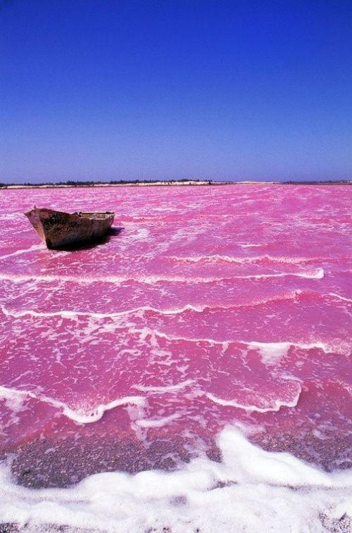 La lac rose au Sénégal... impressionnant!