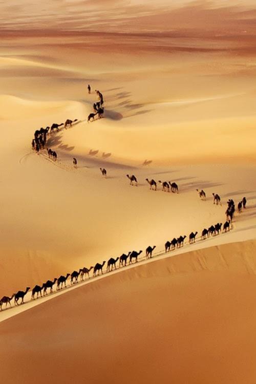 Une caravane... quelque part dans le désert