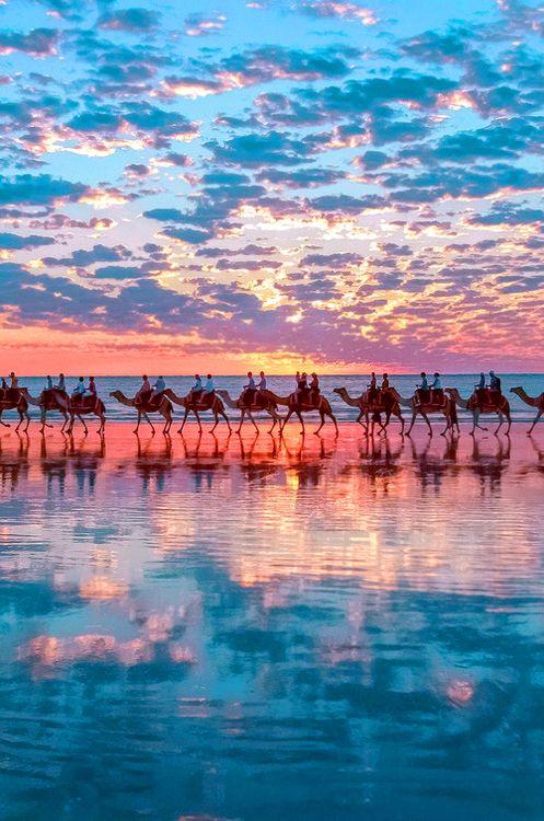 Balade en chameaux en Australie