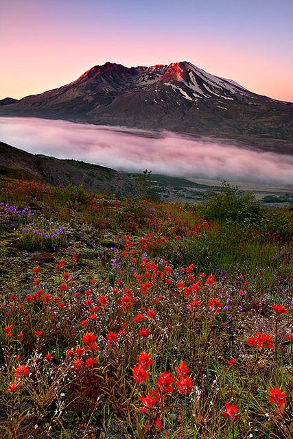 Le célèbre mont Saint Hélène