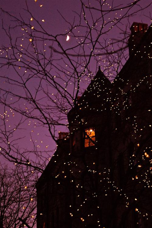 Lumières de Noël qui approche