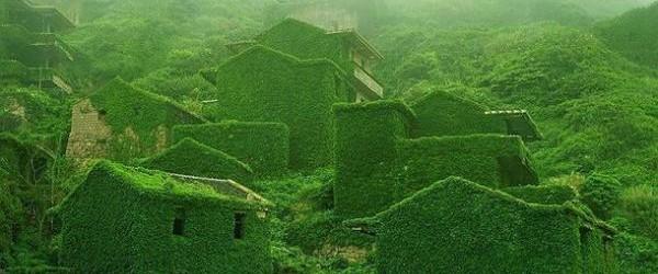 Un village entier englouti par la végétation