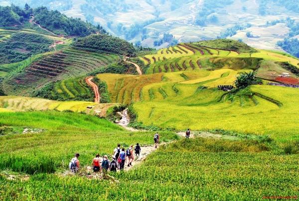 Conseils pour organiser votre Trekking au Vietnam